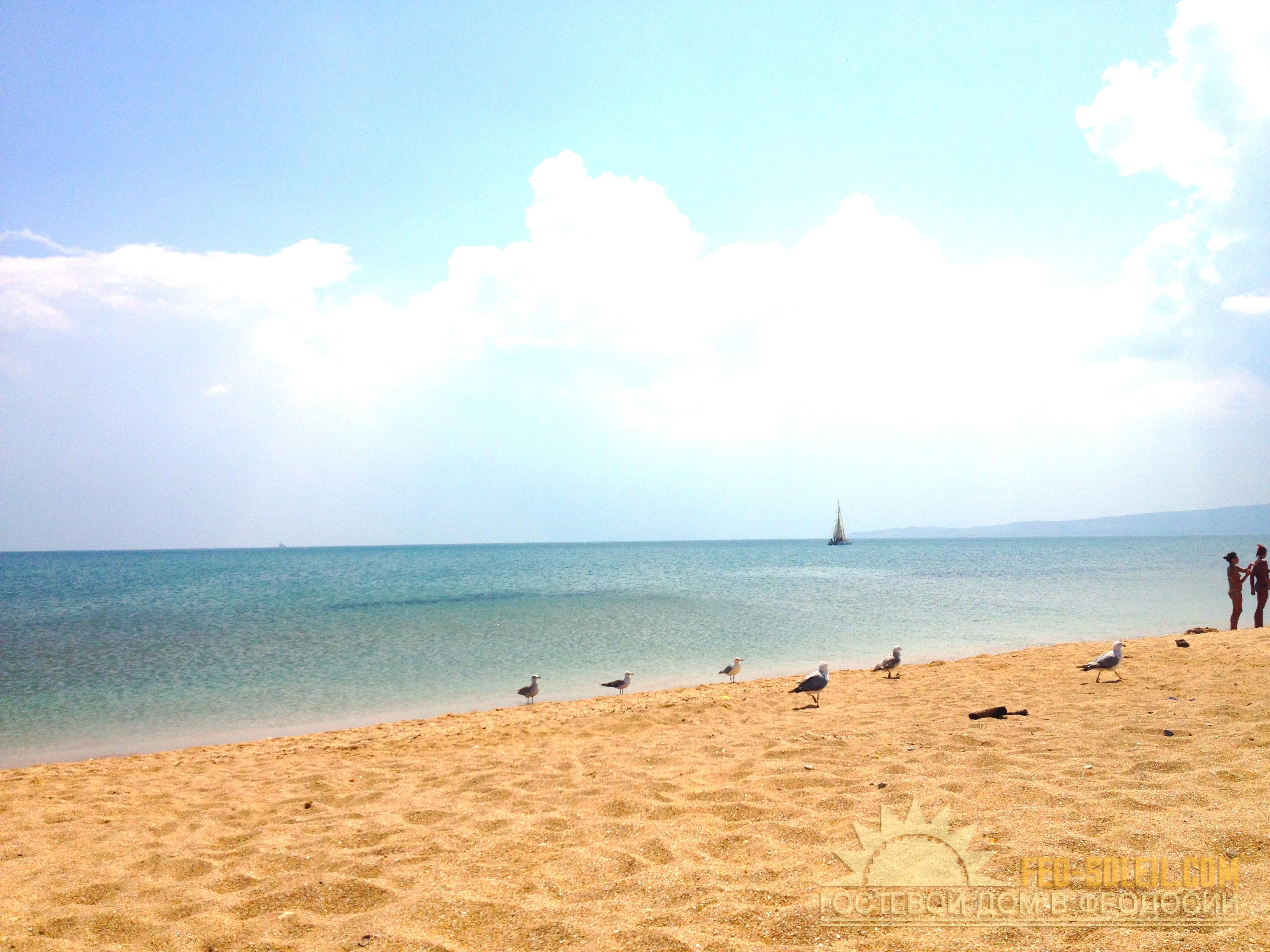 Золотой пляж феодосии. фото